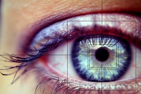 LG Eye Tracking